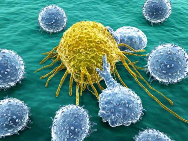 Inmuno-oncologia